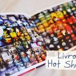 Livro: Hot Shots