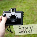Revelei: Golden Half
