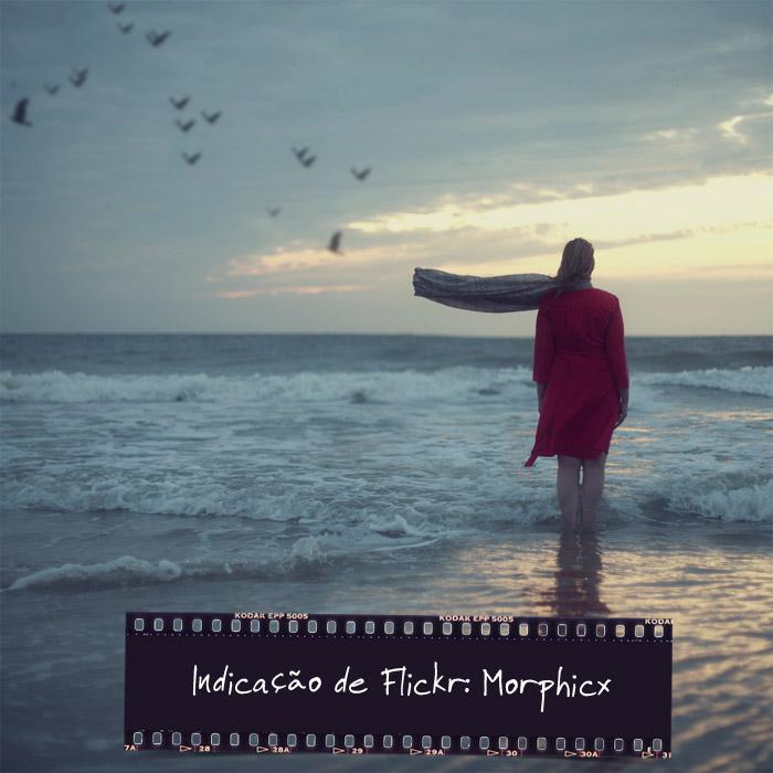 morphicx04
