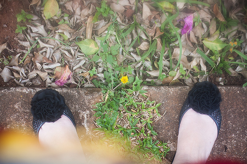 nevoa_foto_06