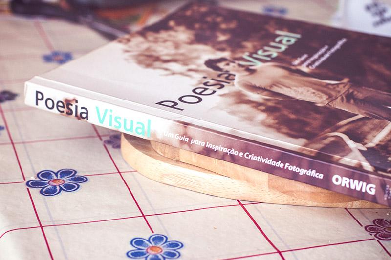 Resultado de imagem para poesia virtual livro