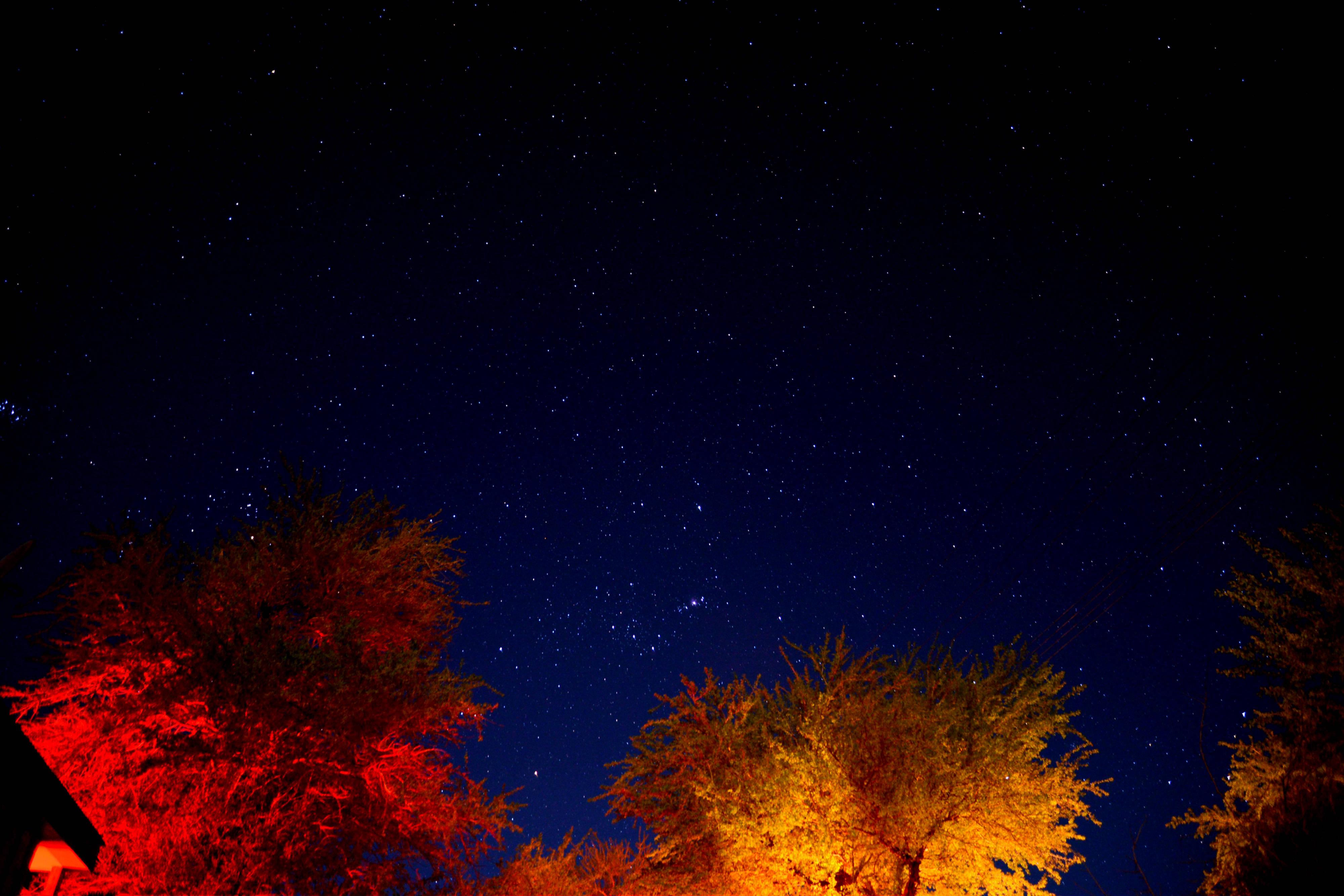 estrelas atacama